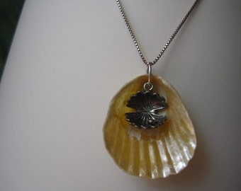 Peek-A-Boo Seashell Pendant with Oyster and Pearl Charm