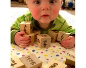 Genius Baby Blocks -  Wooden Foreign Language Numbers - Pyrography