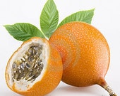 Buy 1 and Get 1 for FREE- PASSION FRUIT Scent Home Fragrance Oil 1 oz Bottle