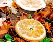 BUY 1 and Get 1 for FREE- POTPOURRI Scent Home Fragrance Oil 1 oz Bottle