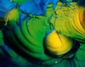 Landscape 29204 - 5x7 Original Signed Fine Art Photograph