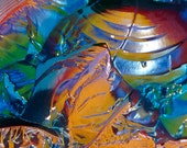 Landscape 28309 - 5x7 Original Signed Fine Art Photograph