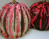 Valentine's Day Chocolate Covered Apples-5