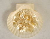 shell buttons, Instant Collection, 125 count RESERVED LISTING