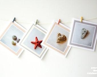 Set of 4 cards, Nature photography, Coastal art cards, Sea star photo card, Sea urchin art card, Heart stone art card, Blank greeting card