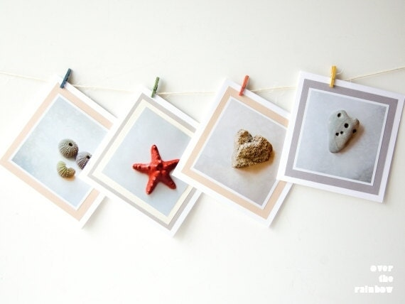 Set of 4 cards, Nature photography, Coastal art cards, Sea star photo card, Sea urchin art card, Heart stone art card, Blank greeting card