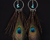 peacock and turquoise feather earrings