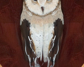 Barn Owl, blank greeting card,reproduction of original painting by Mona Cordell