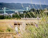 8x10 Photograph of Lavender & St. Johns Bridge, Portland, Oregon