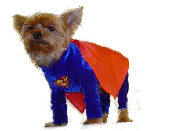 Custom made dog costumes all the cartoon heros