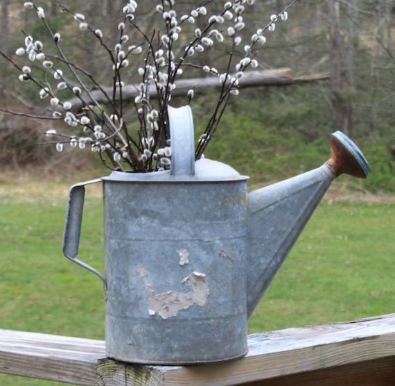 Vintage Farmhouse Galvanized Watering Can