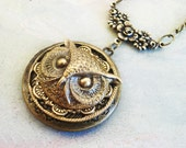 OWL - steampunk awesome and rich with detail oxidized brass owl on filigree floral locket necklace