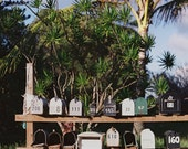 for the love of mailbox rows  - 5x7 fine art photograph