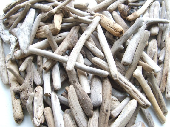 50 Driftwood Supplies Pieces 3 1/2  to 7 1/2 inches For Crafts and Projects