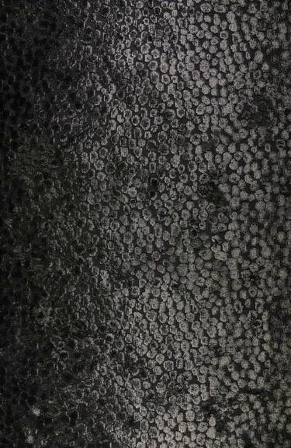 Caviar Burn Out pebble Pattern Upholstery and Drapery fabric per yard