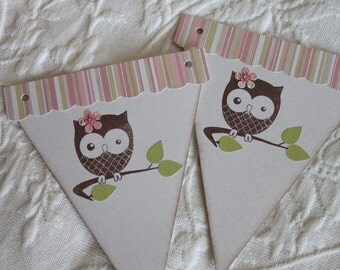 7 Piece Pennant Banner - Baby Girl Owl - Baby Shower Decor