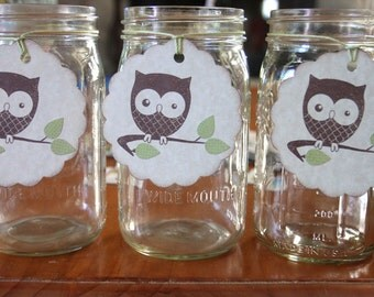 Set of 12 Extra Large Owl Tags with Green Leaves - Baby Shower -  Bridal Shower - Birthday Party - Mason Jar Tags