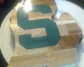 Michigan State Cutting Board