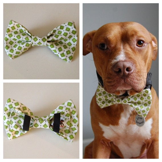 Green and White Squares Boys Will Be Boys Bow Tie Collar Accessory for Pets
