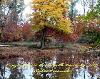 The Colors of Autumn - Appomattox Riverside Park - Virginia
