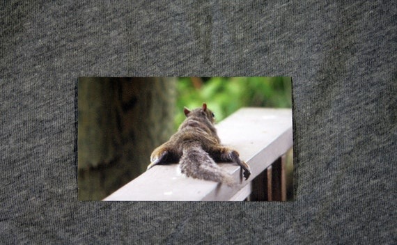 3.54 x 2.05  Magnet -Planking Squirrel in Merritt Island Florida