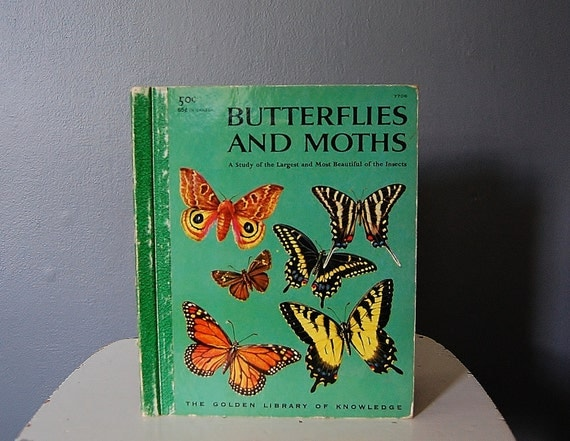 Butterflies Moths Golden Book Vintage Butterfly