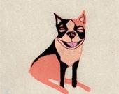 Happy Neon Orange Boston Terrier Drawing