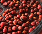 1 pound Organic Dried Rose Hips, bulk package of rosehips, save 1.50 per pound