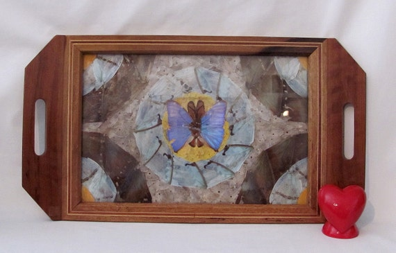 VERY Vintage Real Butterfly under Glass Wood Tray - Irredescent Wings - Made in Brasil - 1940s