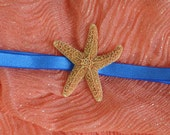 Starfish Headband, Sugar Starfish Silky Bright Royal Blue Elastic Headband