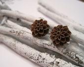 Hot Chocolate Hue of Brown Chrysanthemum (Mum) Earrings