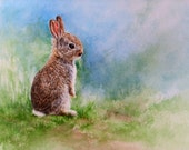 Bunny Rabbit, giclee print of watercolour painting, 7.5 x 9.5