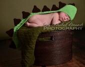 Dinosaur Hat Photo Prop Newborn, Infant, Dragon, Girl, Boy Baby Shower Gift - MADE TO ORDER