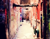 The Alley - 8x10 Fine Art Photographic Print