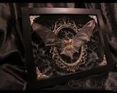 Gothic Taxidermy Bat Goth Curio Black Antique Damask Brass Filigree Neo-Victorian Shadow box frame macabre wall Plaque art