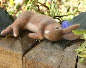 Sleepy Rabbit