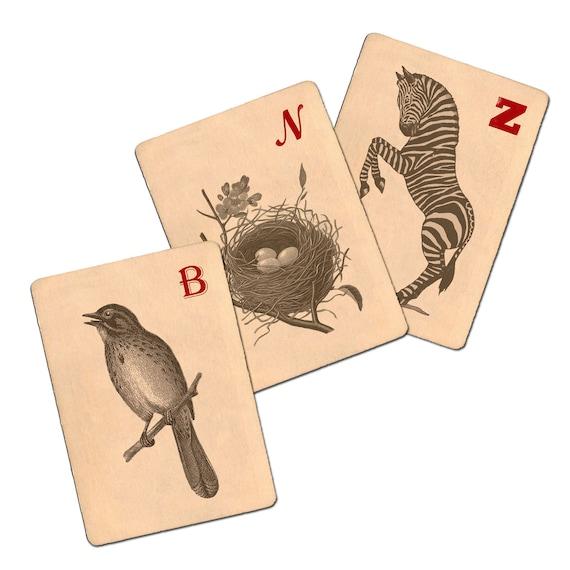 Vintage ATC Sized Flash Cards No 1 Digital Collage: 2.5x3.5 sized images, atc card, nest