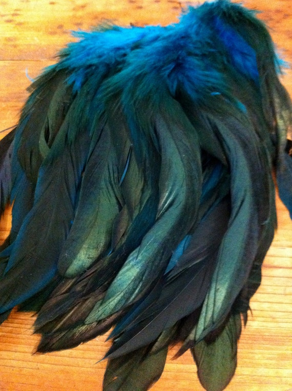 """6 Pheasant Feathers 6-7"""" inches.. Beautiful"""