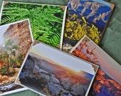 Nature greeting card set