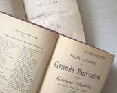 antique french books set of two in brown and gold