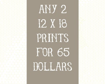Choose any 2 12 x 18 prints for 65 dollars