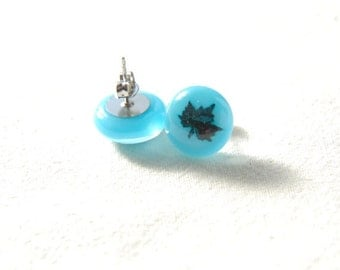 Fused glass stud earrings with maple leaf pattern in turquoise