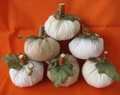 6 Pumpkins Miniature Halloween Fall