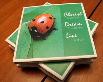 Ladybug Tile Coasters - Cherish...Dream...Live