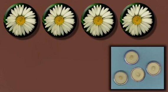 "WHITE DAISY Flower 4 Altered Art 1"" Sew-On Shank Buttons"