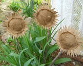 "Primitive burlap sunflower rustic"" HAFAIR"""