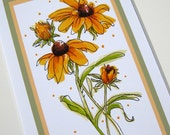 Black-eyed Susans. Golden Yellow Flowers Art. Matted Print. Ready to Frame 8x10