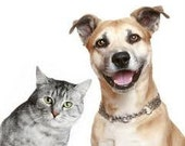Dog and Cat Natural Handmade recipes DYI includes food,treats,shampoo and flea repellents