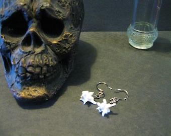 Snake vertebrae-Snake bone earrings ( taxidermy)