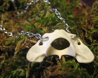 Real Bone Vertebrae Necklace